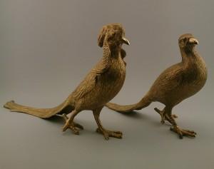 sanborns birds