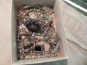 112012jewelry9937