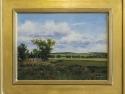 #11  Milkweed on the Prairie
