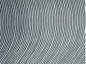 Bridget Riley  Untitled 1961